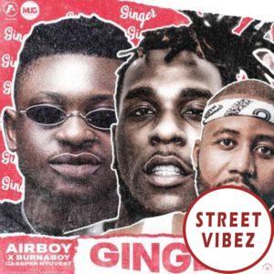 Airboy - Ginger Ft. Burna Boy, Cassper Nyovest Mp3 Audio Download